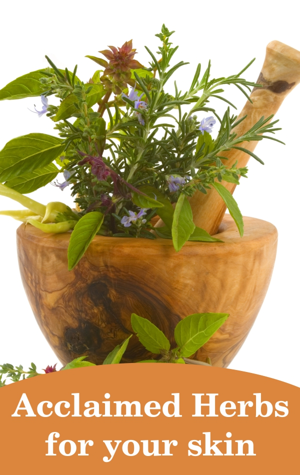 4 Best Herbs For Your Skin