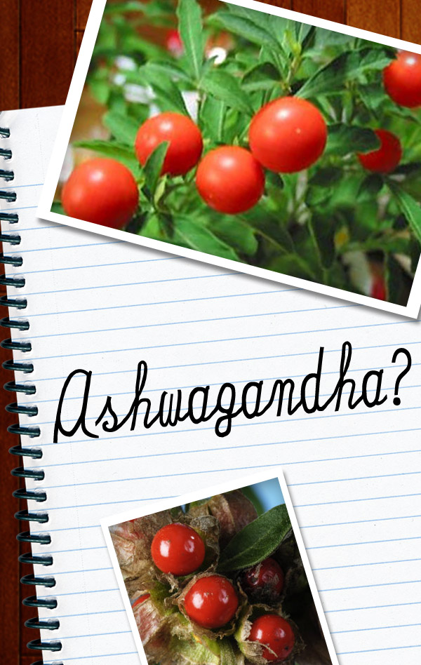 5 Health Benefits of Ashwagandha For Your Skin
